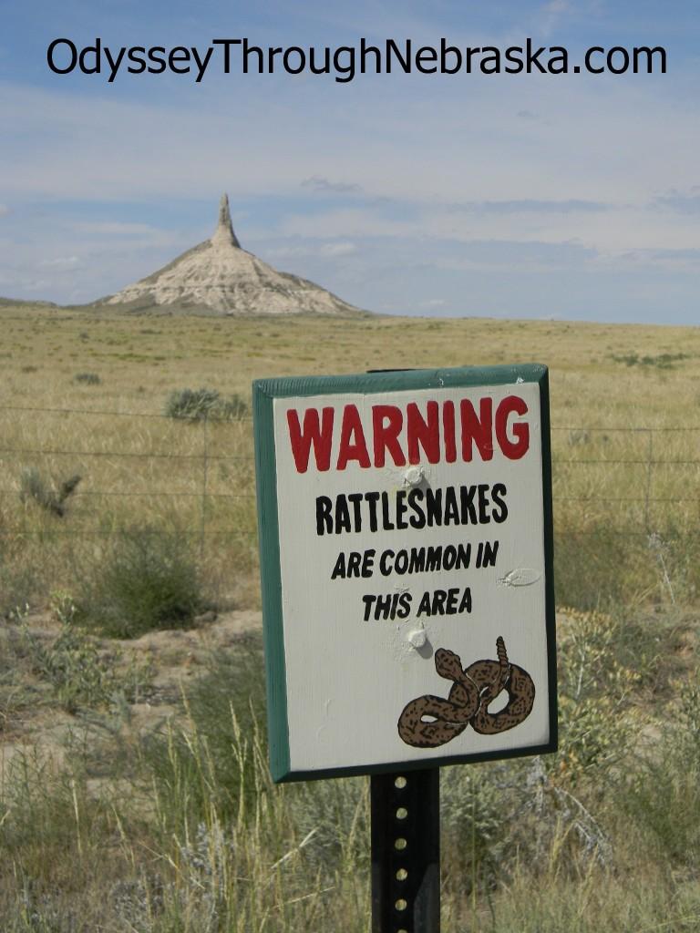 Chimney Rock snake