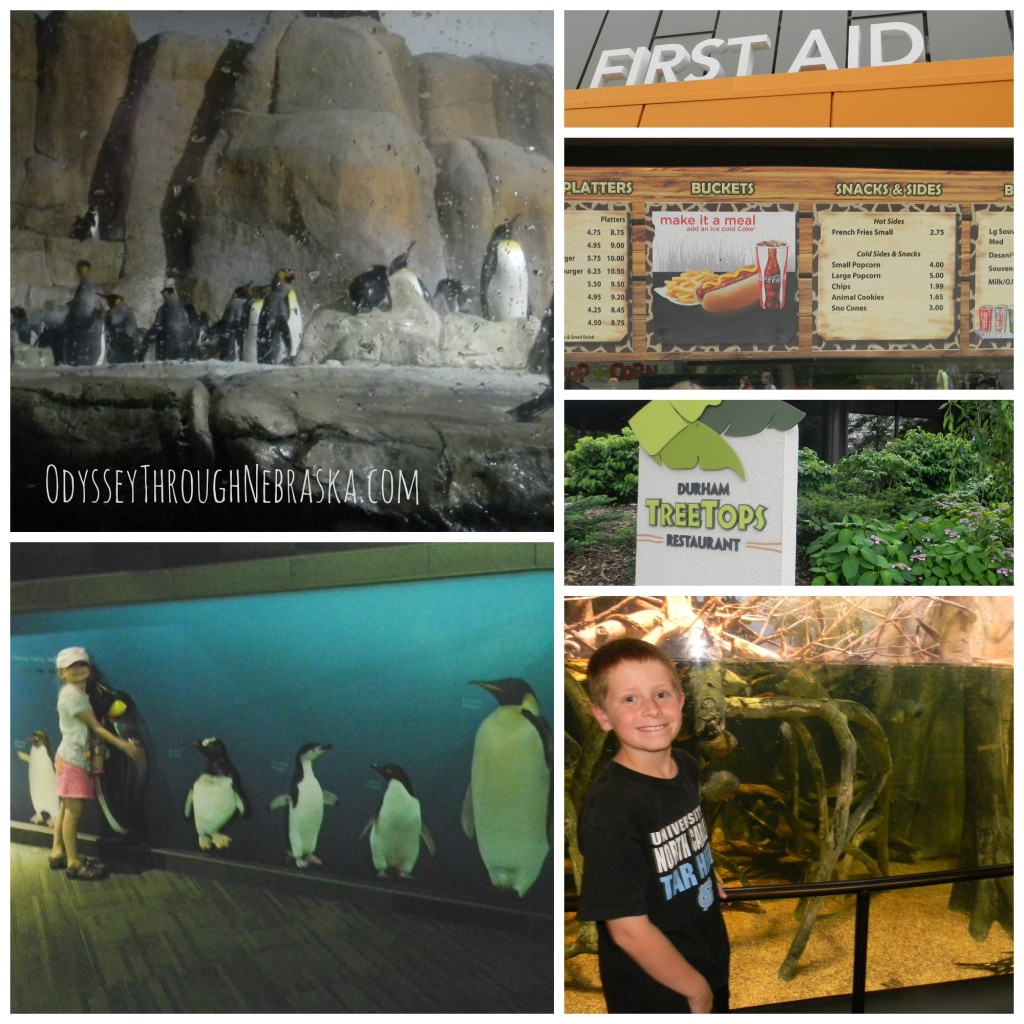 Henry Doorly Zoo P-R