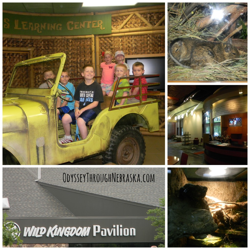 Henry Doorly Zoo Wild Kingdom Pavilion Collage