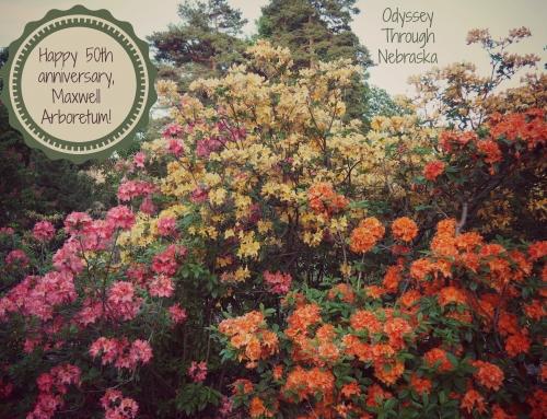 Happy 50th anniversary, Maxwell Arboretum