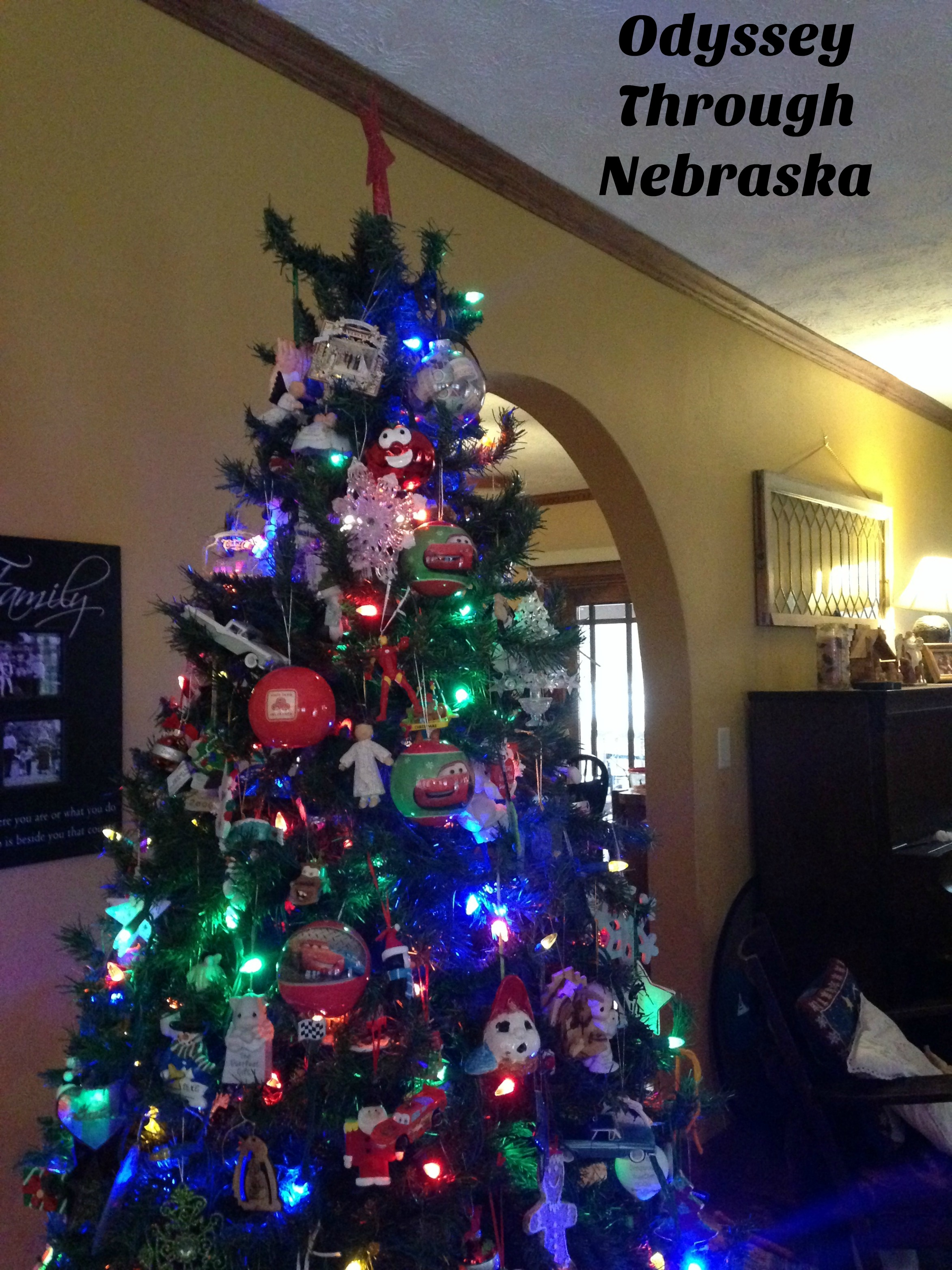 Odyssey Through Nebraska's Christmas tree