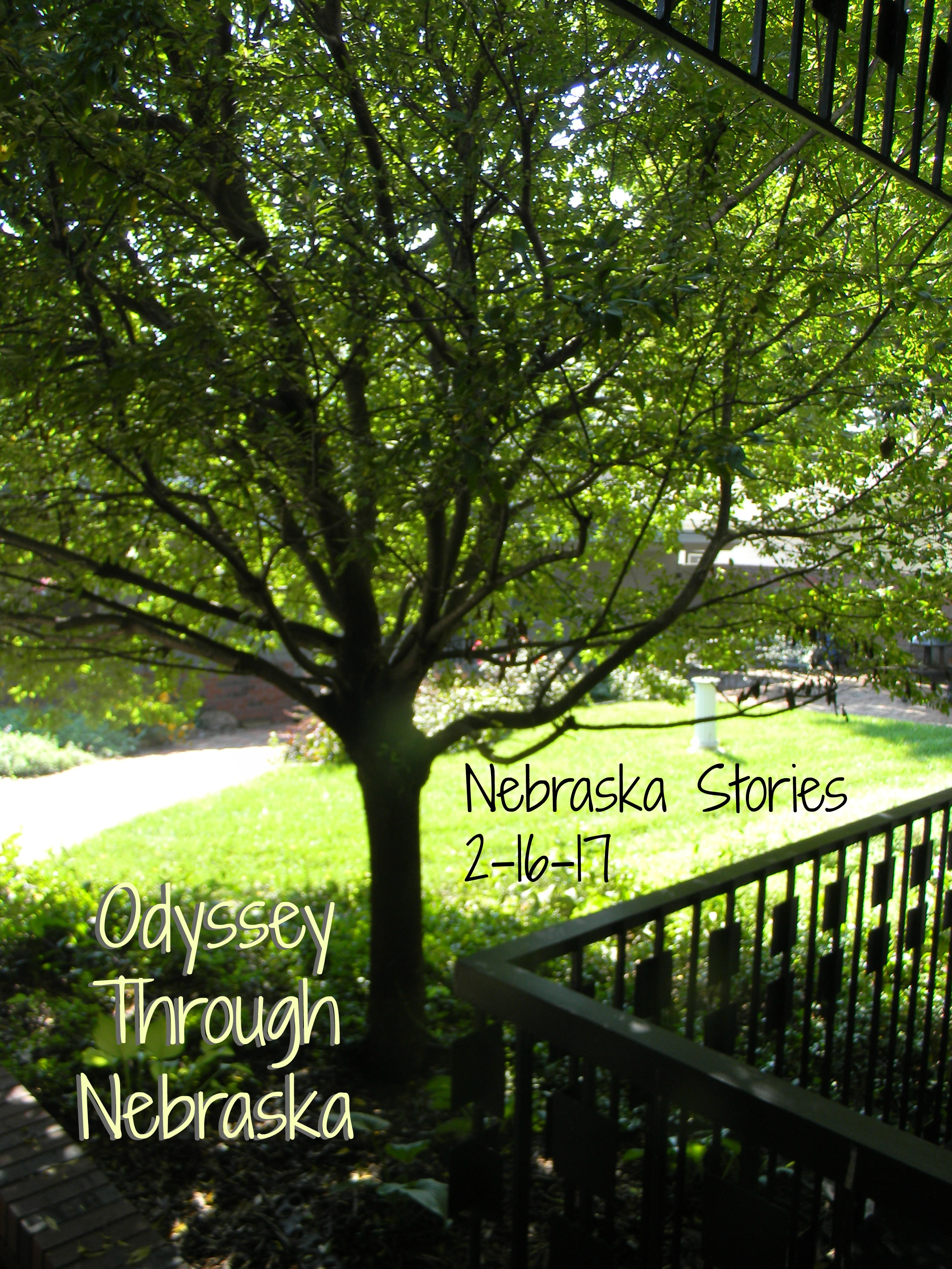 Odyssey Through Nebraska Nebraska Stories 806