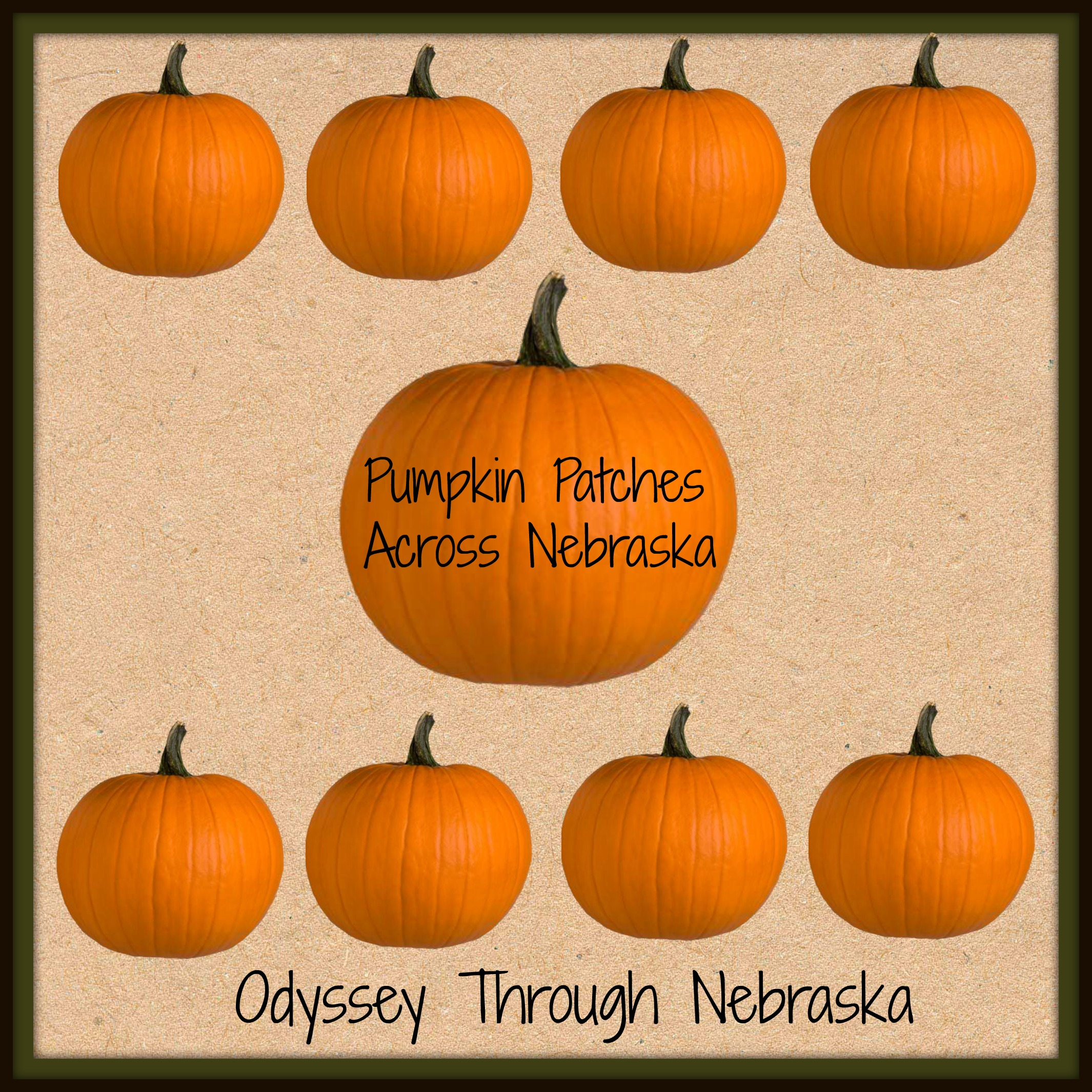 Nebraska Pumpkin Patches