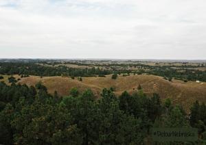 Nebraska National Forest