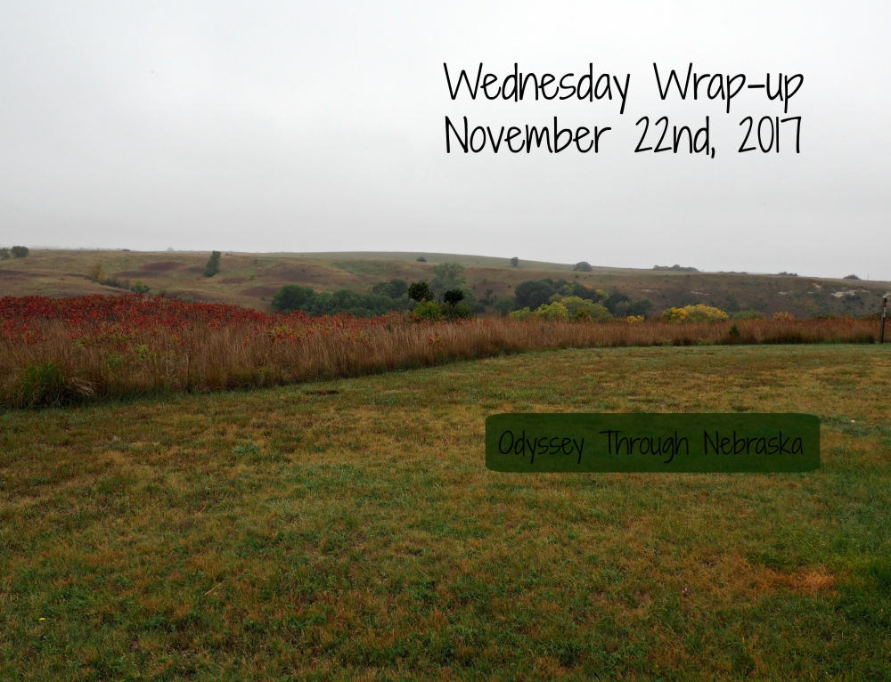 November 22nd Wednesday Wrap-Up