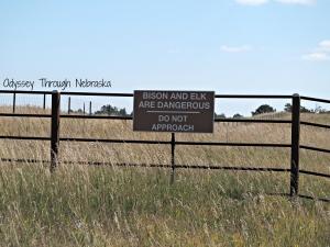 7 reasons to visit the Fort Niobrara National Wildlife Refuge