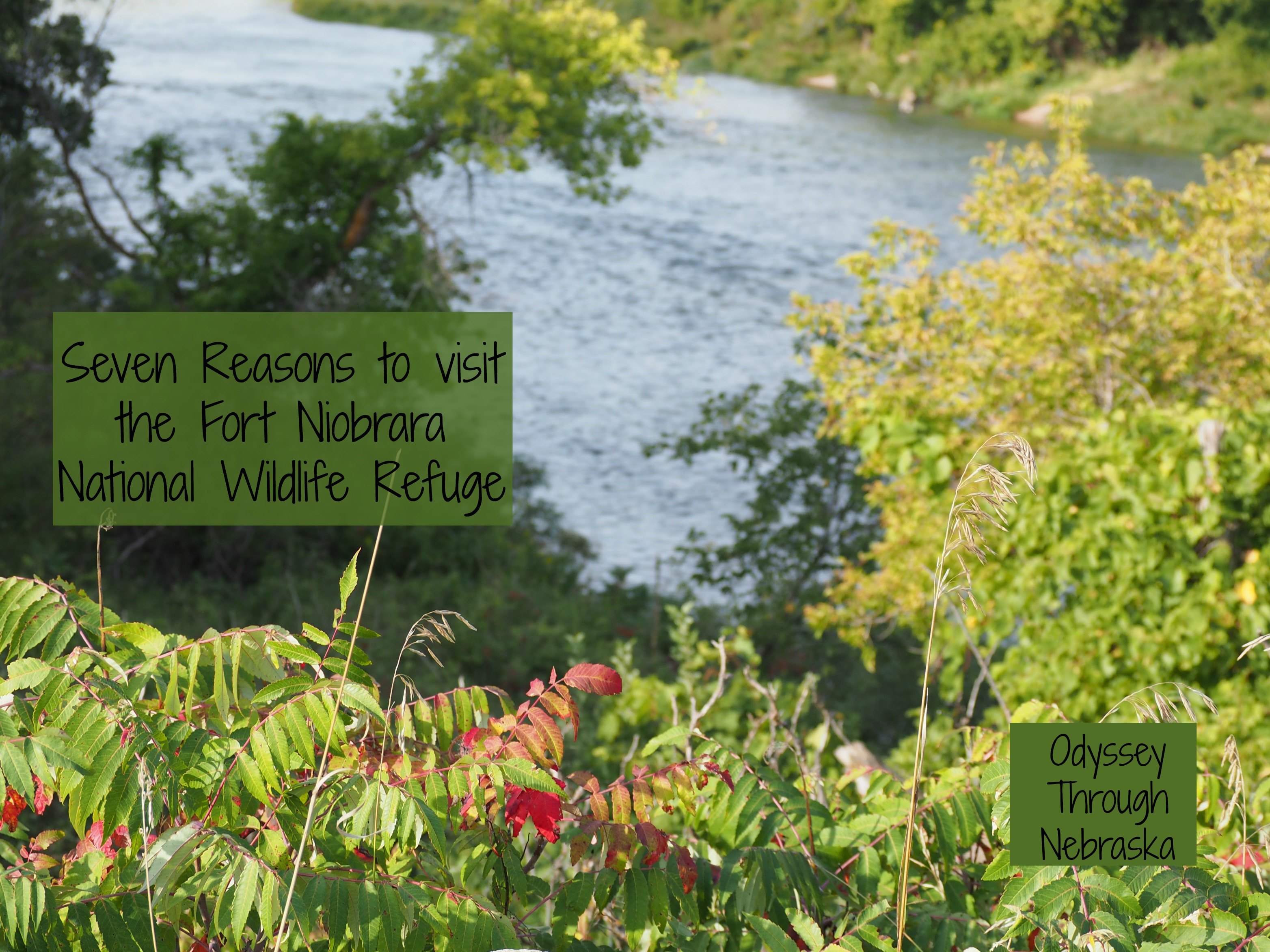 7 reasons to visit the Fort Niobrara National Wildlife Refuge