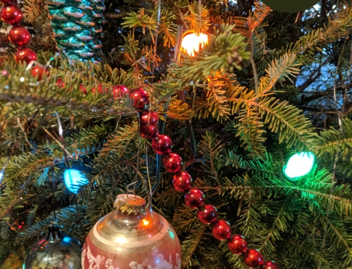 Away from Home at the Holidays: Wordless Wednesday 12-19-18