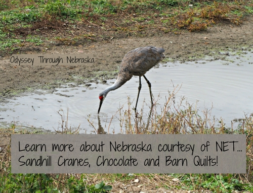 Learn more about Nebraska on NET